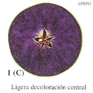 Test almidon fruta pepita tipo circular estado 01