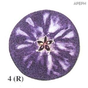 Test almidon fruta pepita tipo radial estado 04