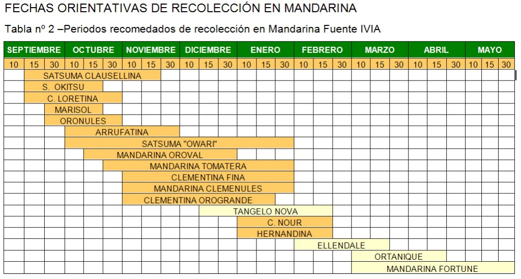 Calendario recoleccion mandarina
