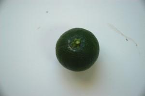 Daños producidos por Pezothrips kellyanus en frutos cítricos