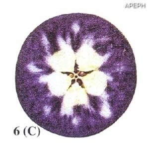 Test almidon fruta pepita tipo circular estado 06