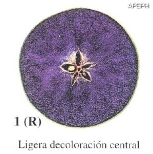Test almidon fruta pepita tipo radial estado 01