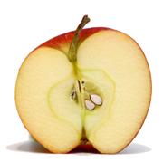 Partes del fruto - Manzana
