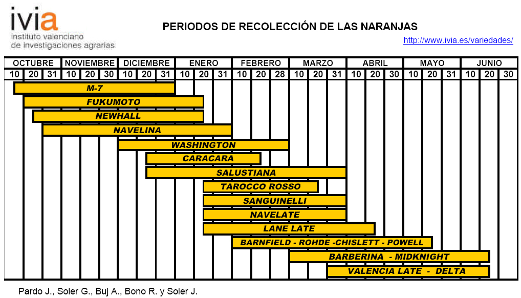 Produccion integrada citricos Calendario de recoleccion Naranjas